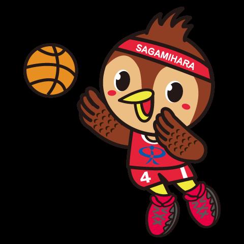 バスケットボール協会