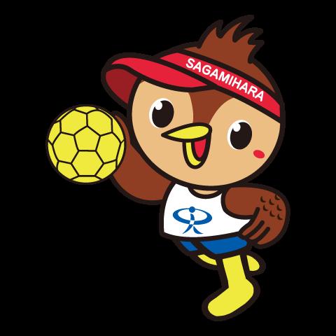 ハンドボール協会